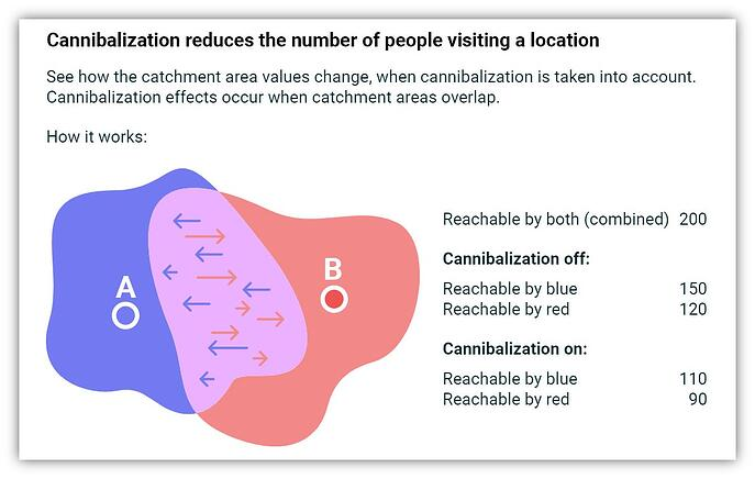 Cannibalization-explainer-graphic-text-shading-no-info